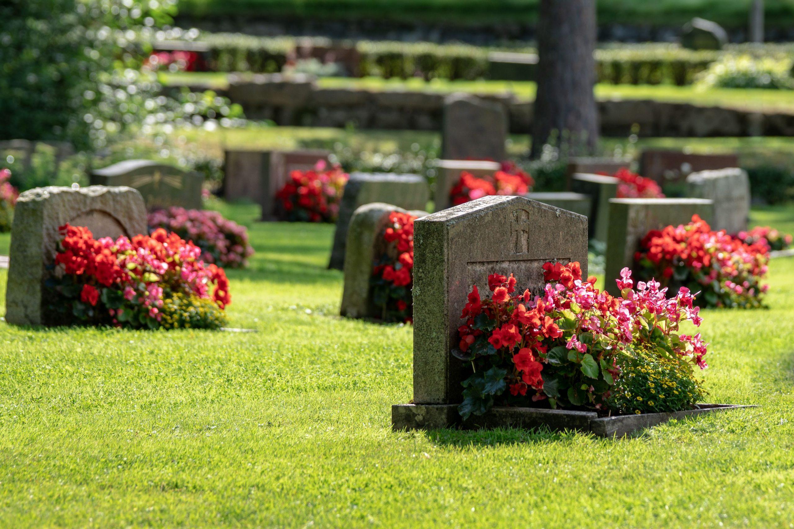 lot cimetiere mausolee concession
