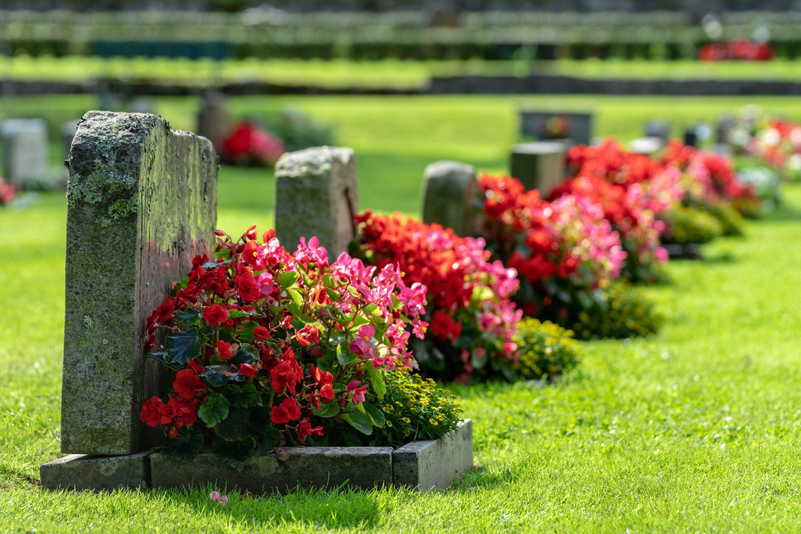 contrat sepulture cimetiere mirabel