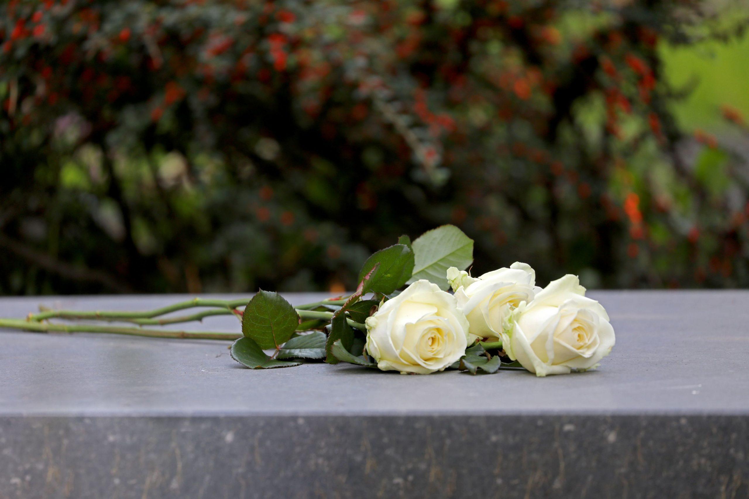 funerailles ecologiques joliette conseils